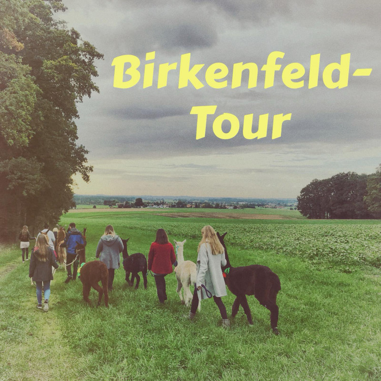 Birkenfeld-Tour (2 Std)