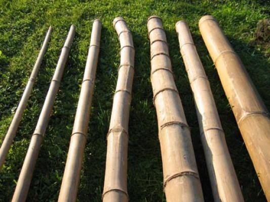 Stange Bambusrohr